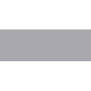 goodman feilder.png