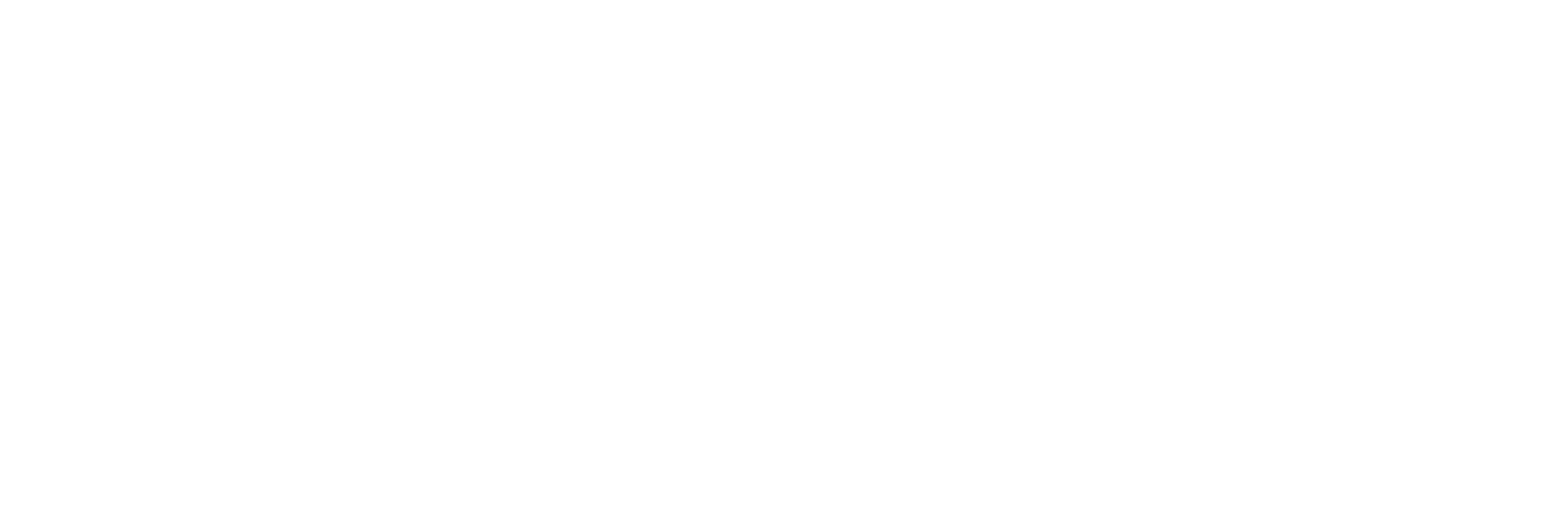 PFP Fire Alarm Systems White.png