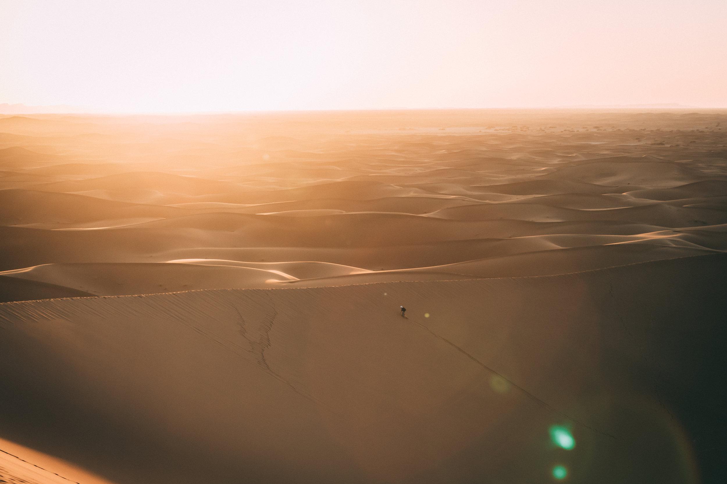 Sahara Full Size-179.jpg