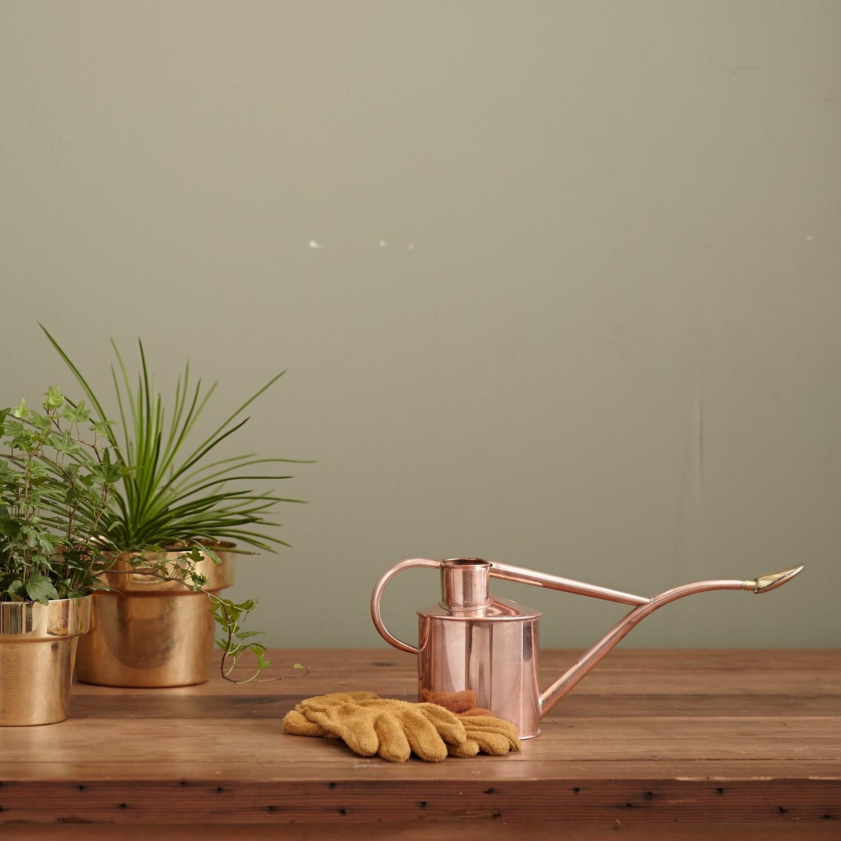 手間いらずの観葉植物を取扱 - 贈答用の花の代名詞である胡蝶蘭をいただいて、お花のお世話や処分に困ったことはありませんか。Botanismでは、手間のかからない、育てやすい観葉植物のみを厳選し、受け取った方が植物の世話や処分に困らないような、グリーンギフトをご用意しています。また植物のお手入れ方法を記したカードも付いています。
