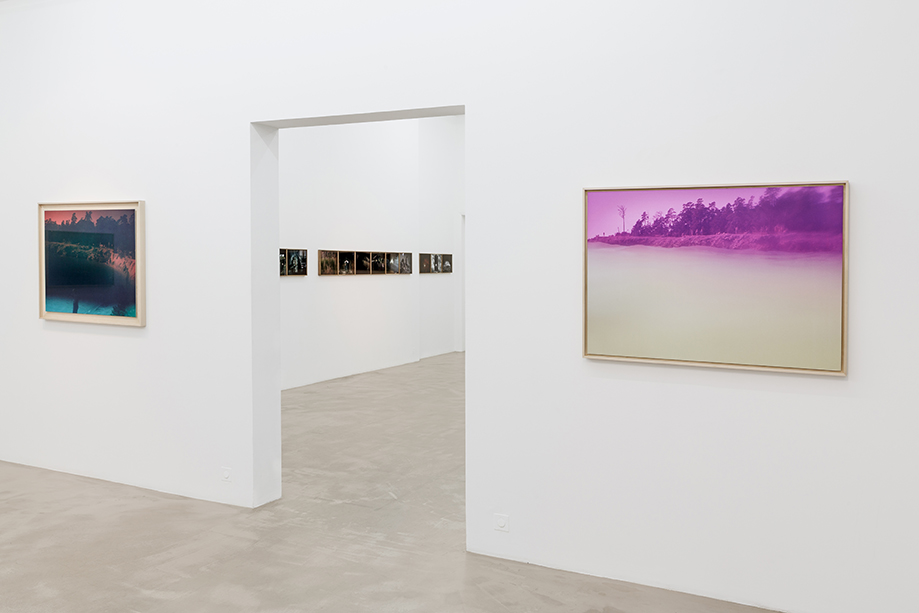 Next Level Galerie 2016_4.jpg