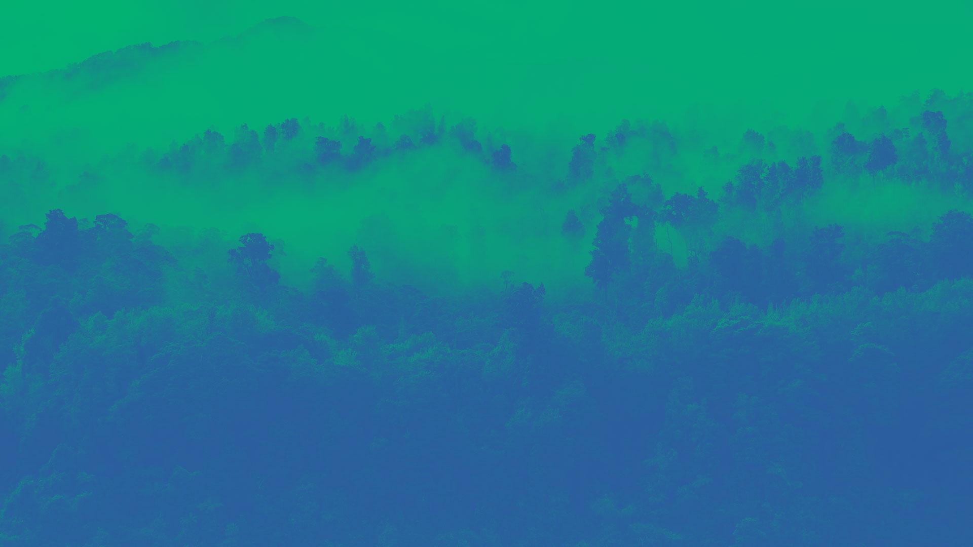 Image-overlay-header-nature-01.jpg
