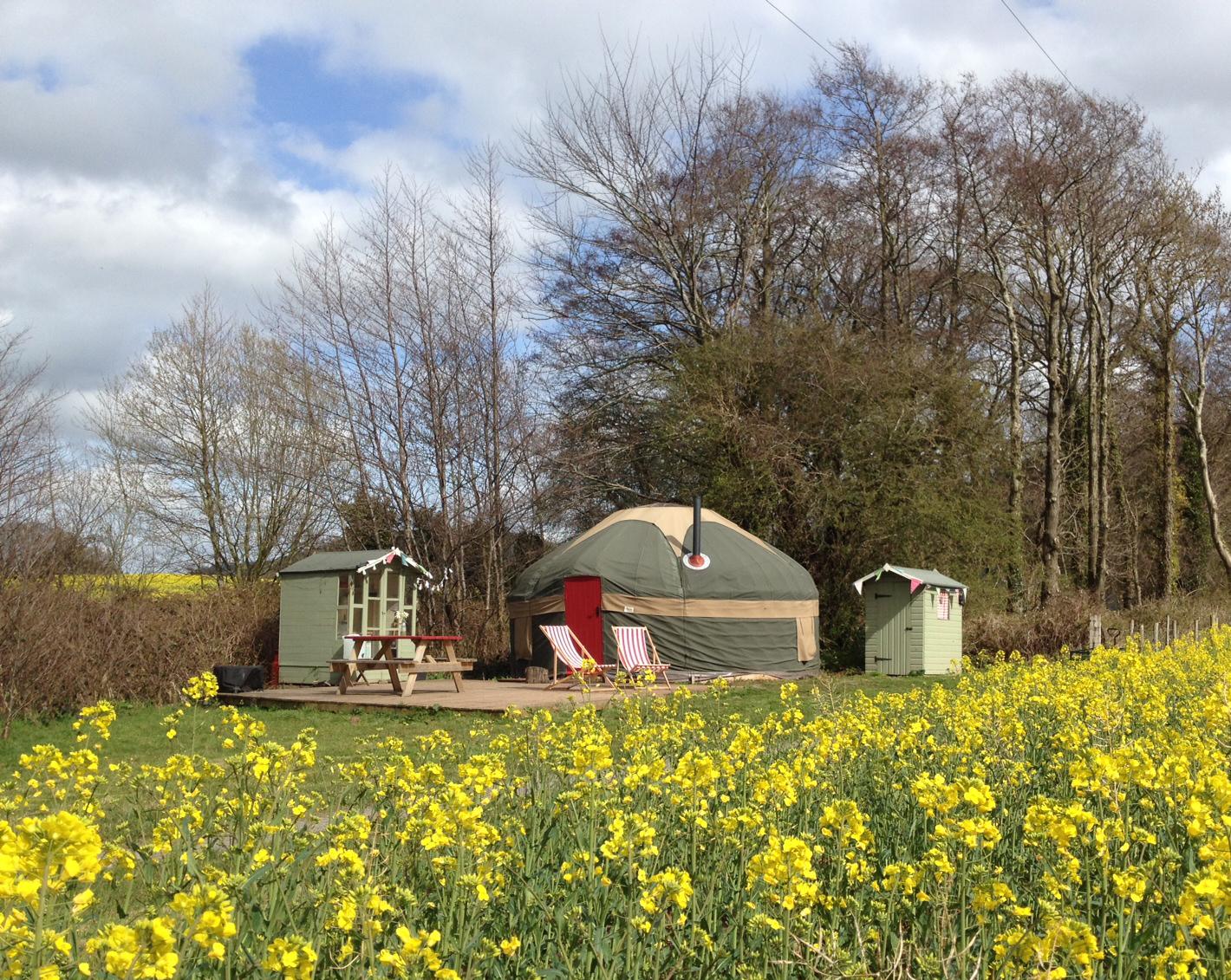 Yurt rapeseed exterior.jpg