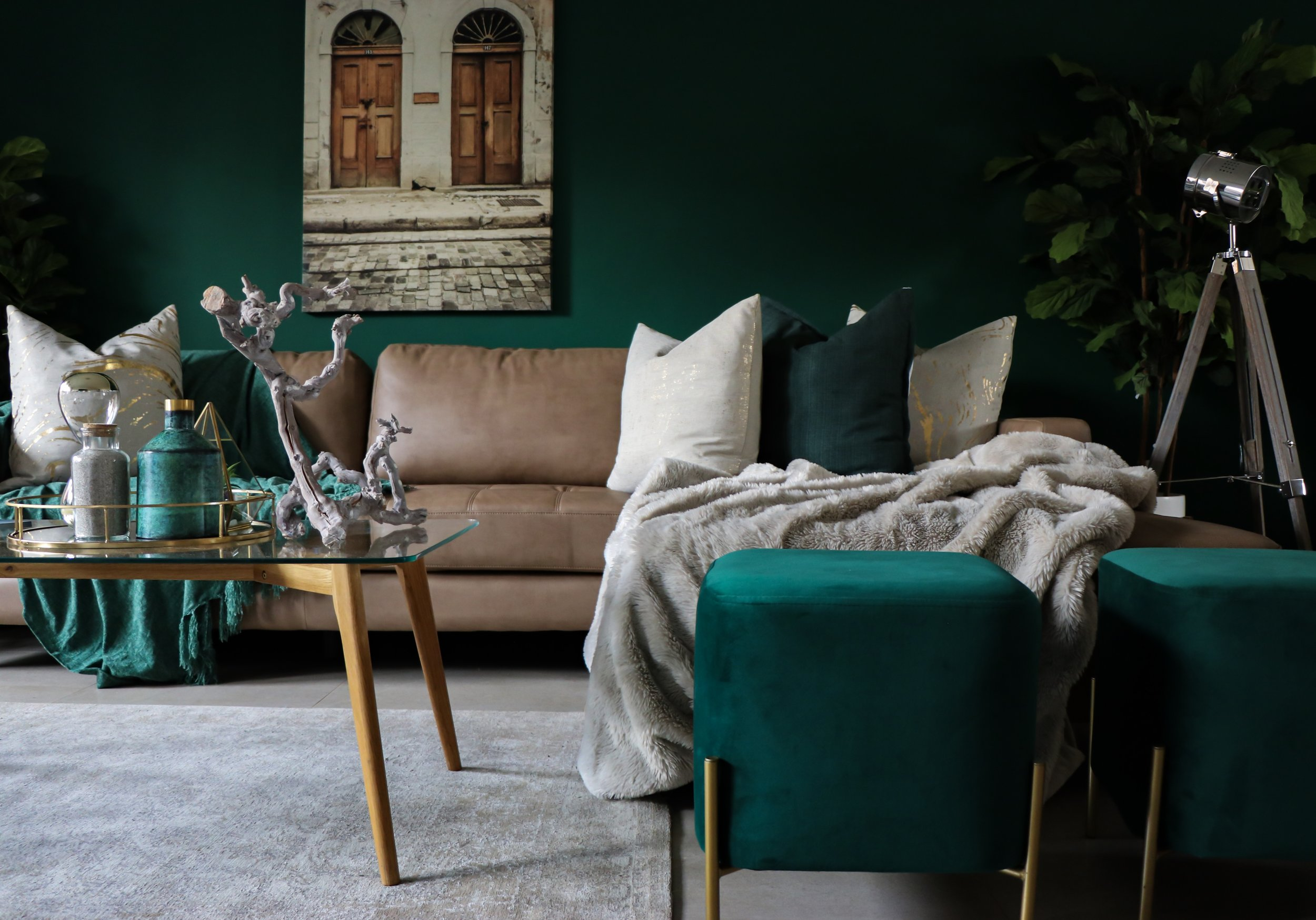 ¡Agrega un poco de color a tu hogar! -