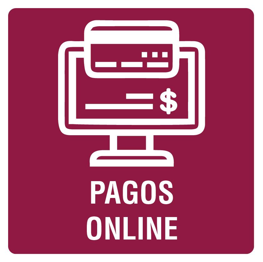Botón de pagos