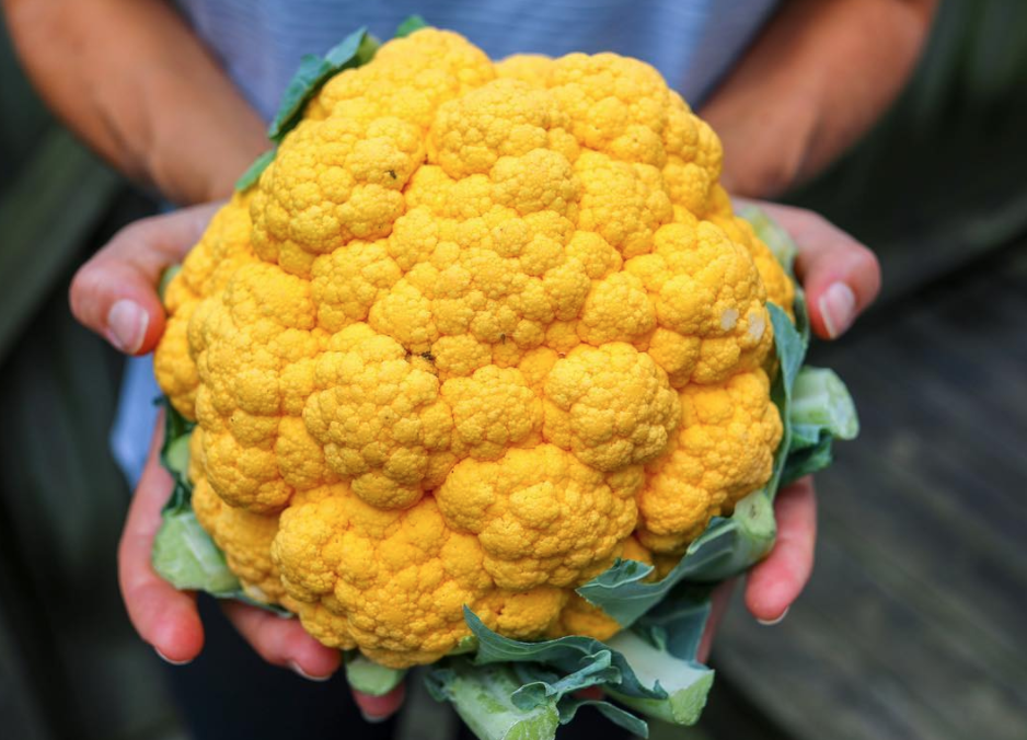 5 Dishes To Make From Your Haul At The Farmers Market