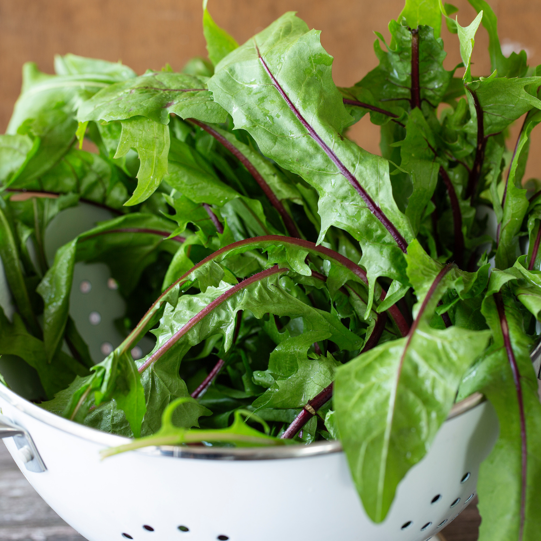 Eat Bitter Greens For Better Health. Here's Why