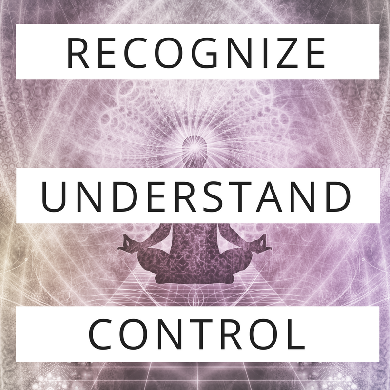 UNDERSTAND REC CONTROL.png