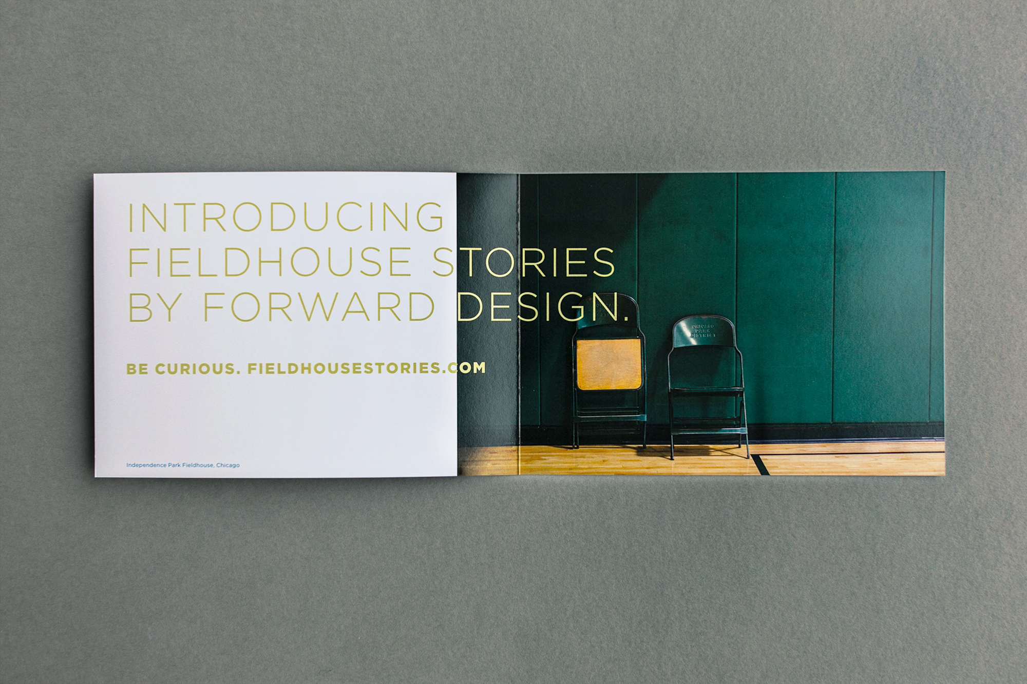 Forward Design Chicago Direct Mail_LDP-6025 b 2000px.jpg