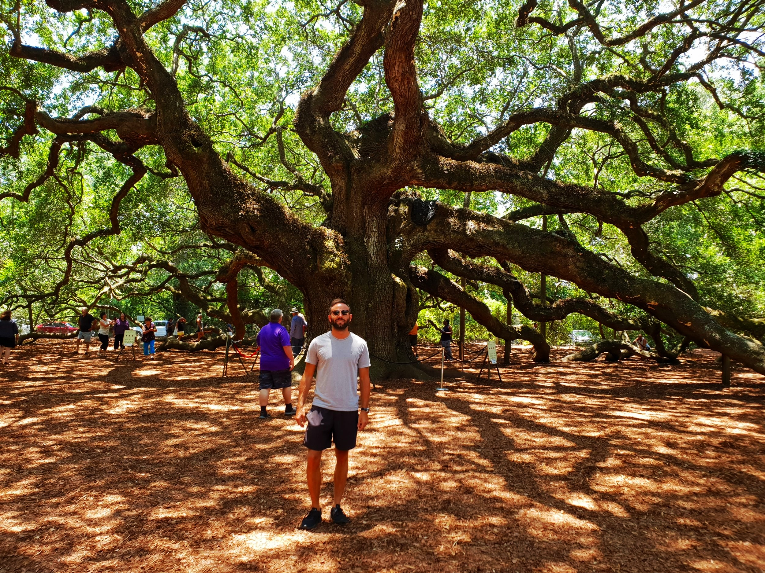 This the oldest tree in America, allegedly. I have no idea what's going on in my pocket in this picture, but presume its a ghost. I was quite rude about some of the 'Ghost Tours' on offer in Charleston, and clearly the spirits are taking their revenge in this photo.