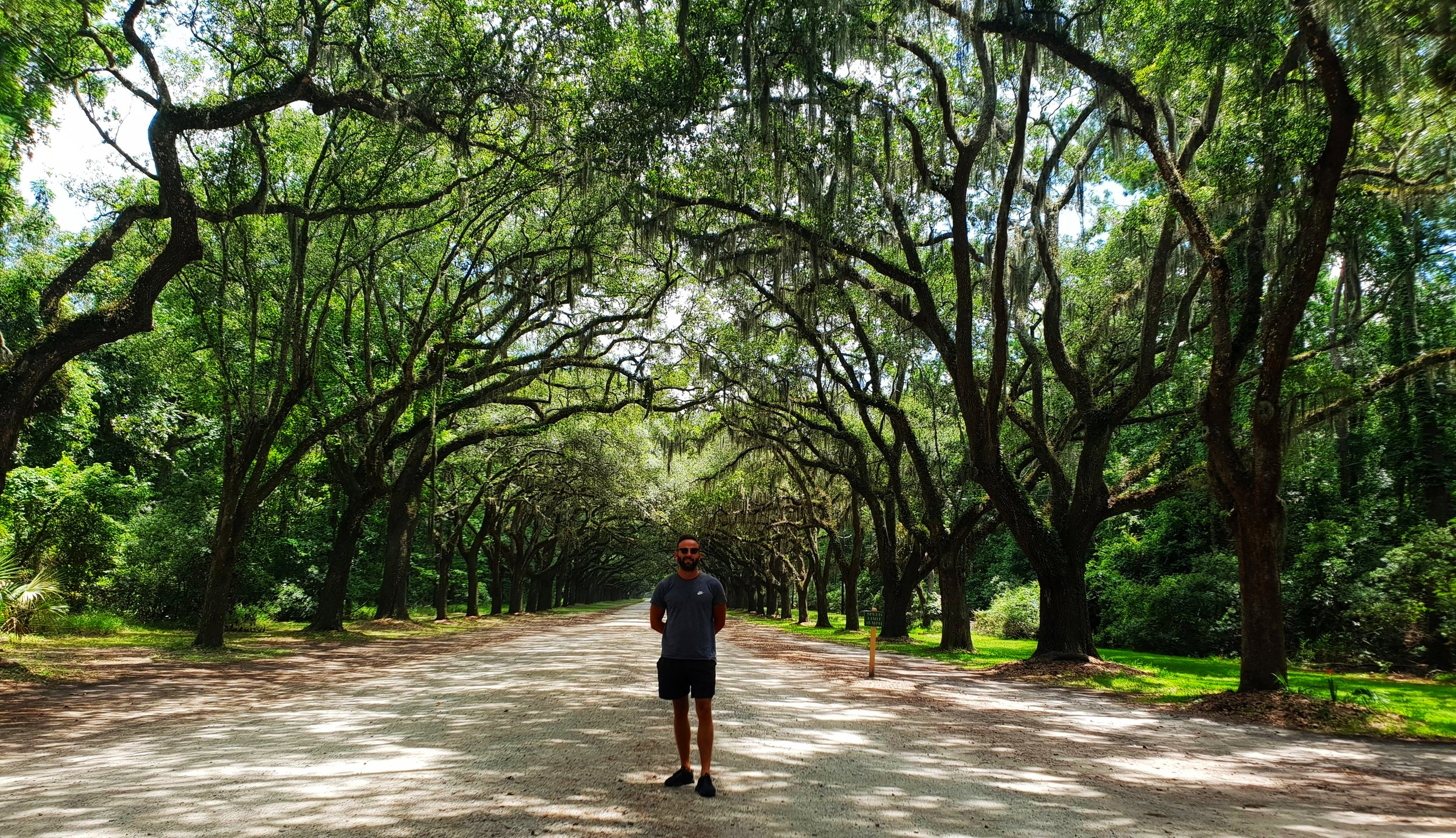 Wormsloe Historic Park, Savannah. My narcissistic desire to include myself in the photo has essentially ruined the entire composition of it, by blocking the illusion of the road continuing infinitely into the distance. But I'm not changing it.