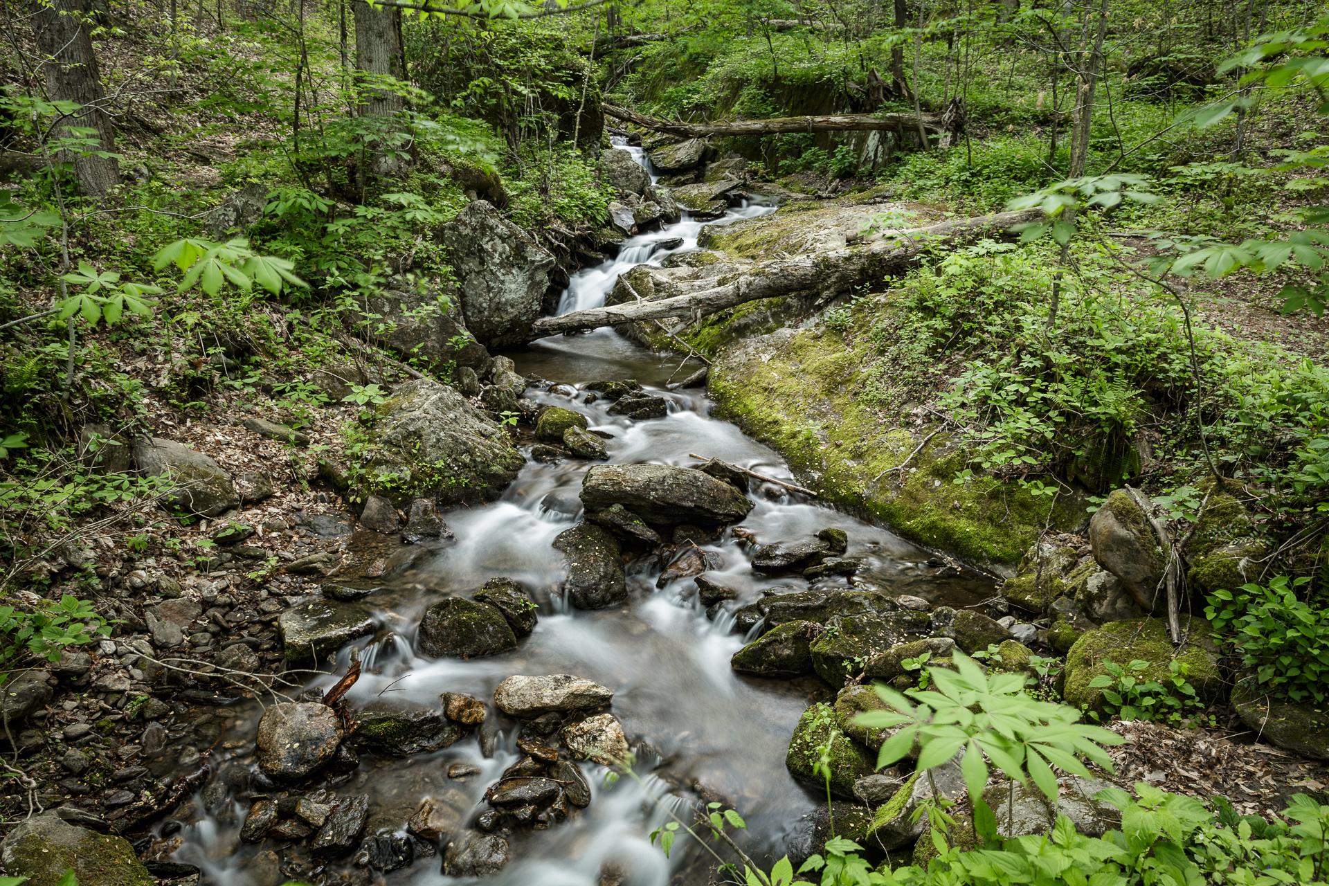 walker-falls-in-the-pisgah-national-forest-Kathleen-Kathy-Roberts-Asheville-NC-Photographer-2.jpg
