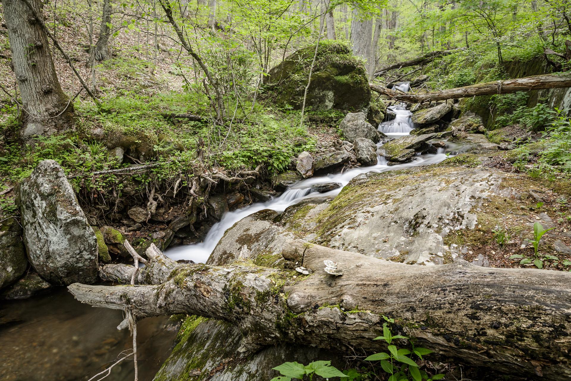 walker-falls-in-the-pisgah-national-forest-Kathleen-Kathy-Roberts-Asheville-NC-Photographer-3.jpg