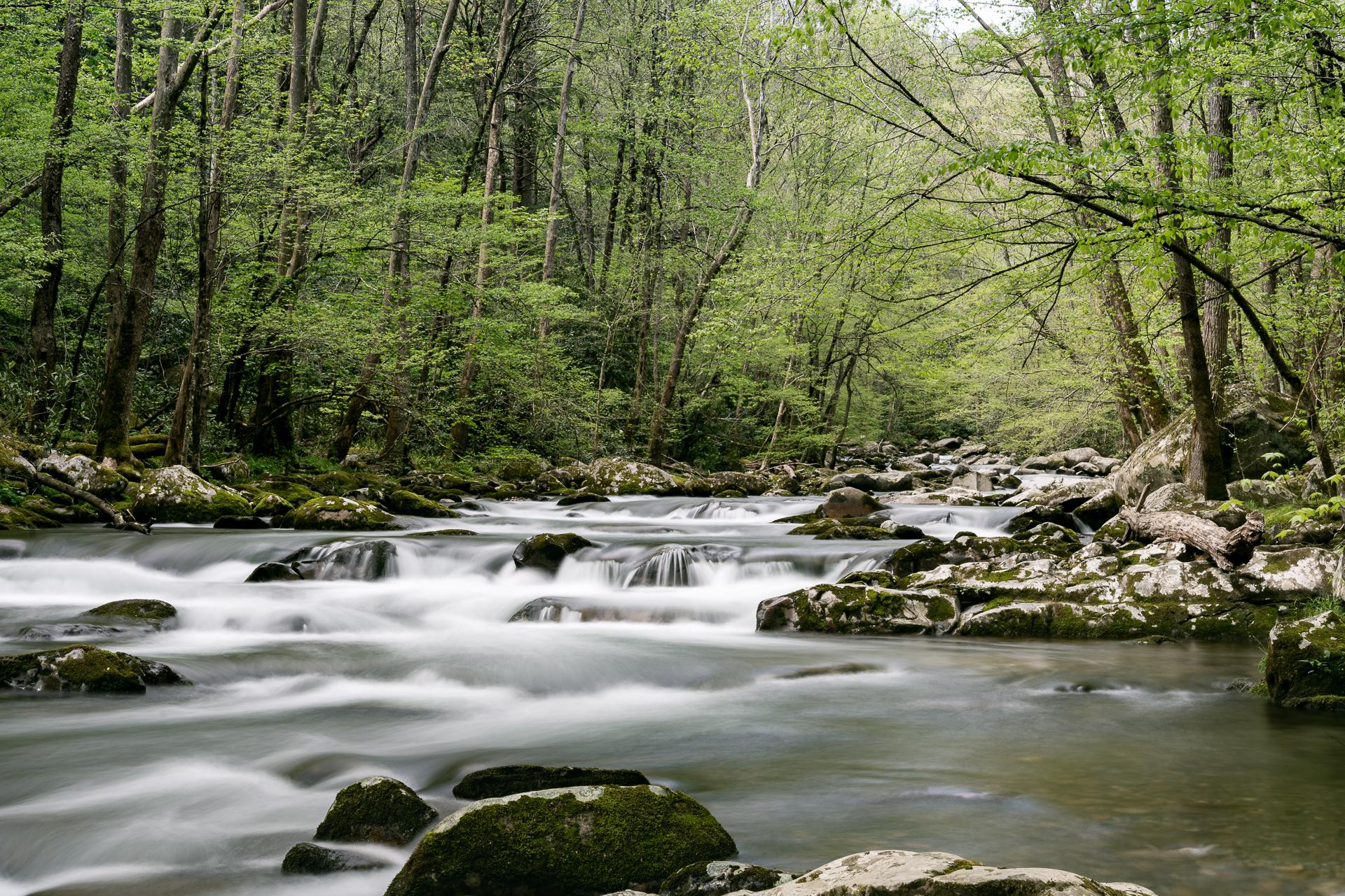 big-creek-gsmnp-great-smoky-mountains-national-park-Kathleen-Kathy-Roberts-Asheville-NC-Photographer-3.jpg