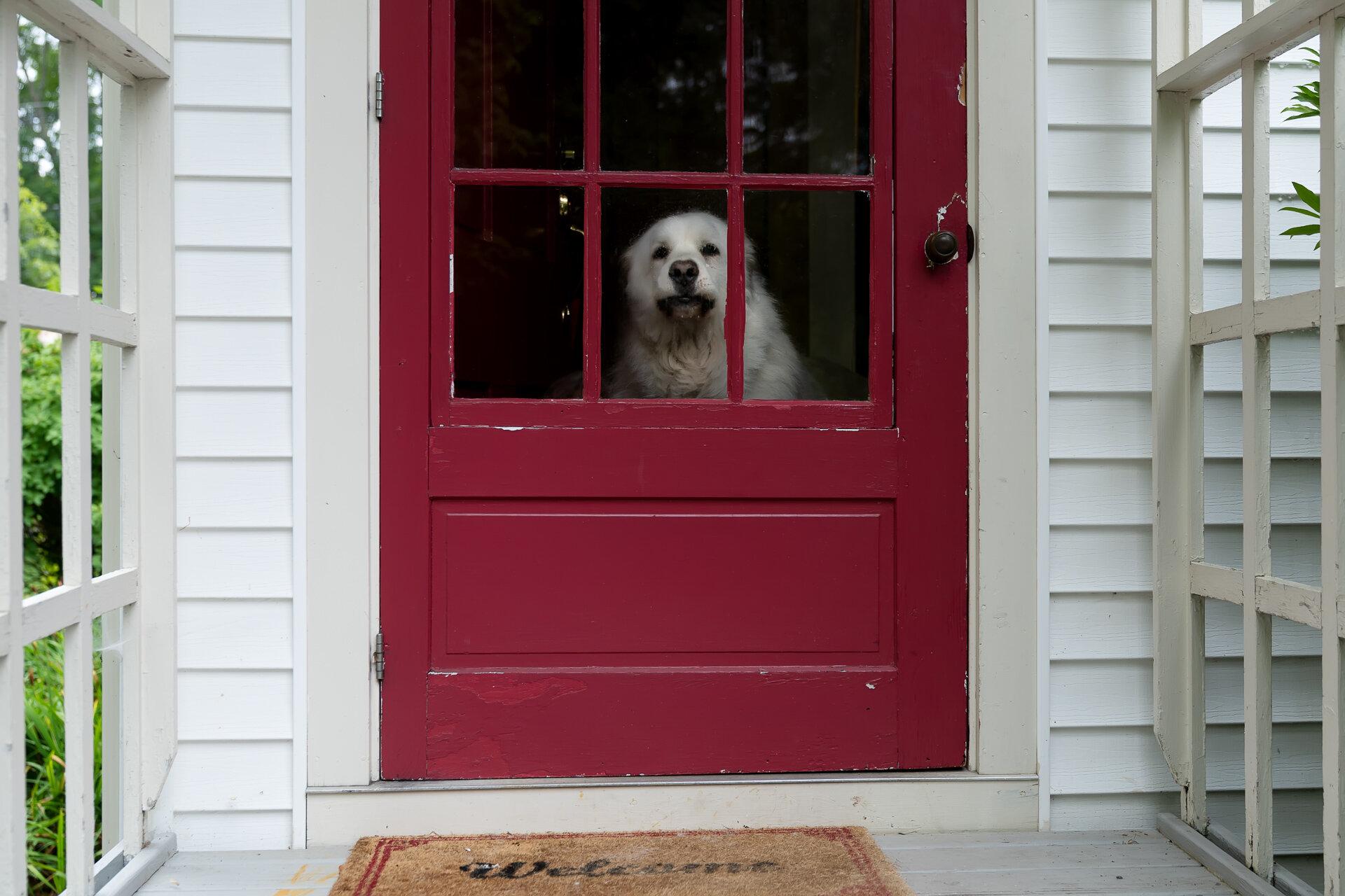 Camden-Maine-vacation-Kathleen-Kathy-Roberts-Asheville-NC-Photographer-16.jpg