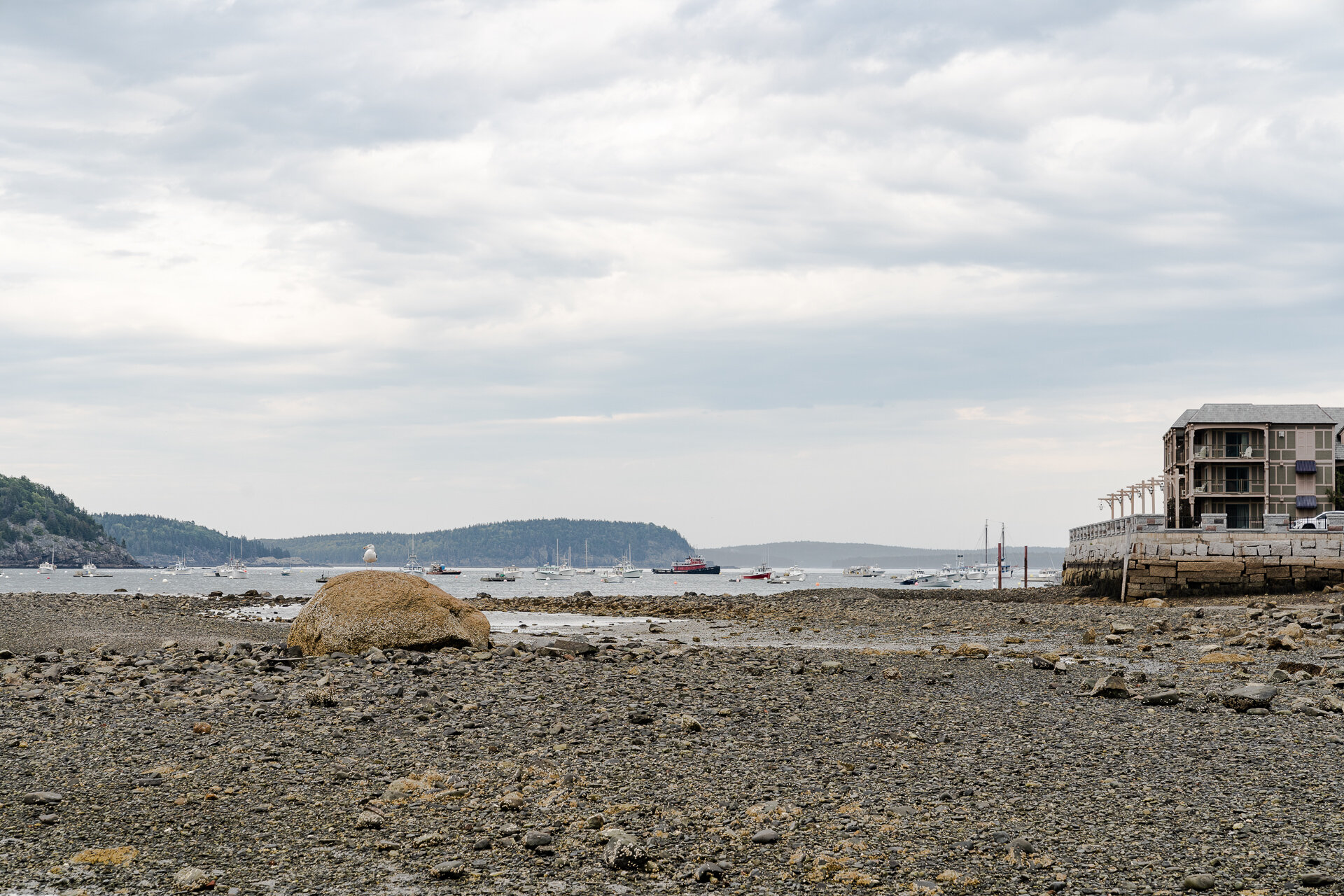 Bar-Harbor-Maine-Sunset-vacation-Kathleen-Kathy-Roberts-Asheville-NC-Photographer-15.jpg