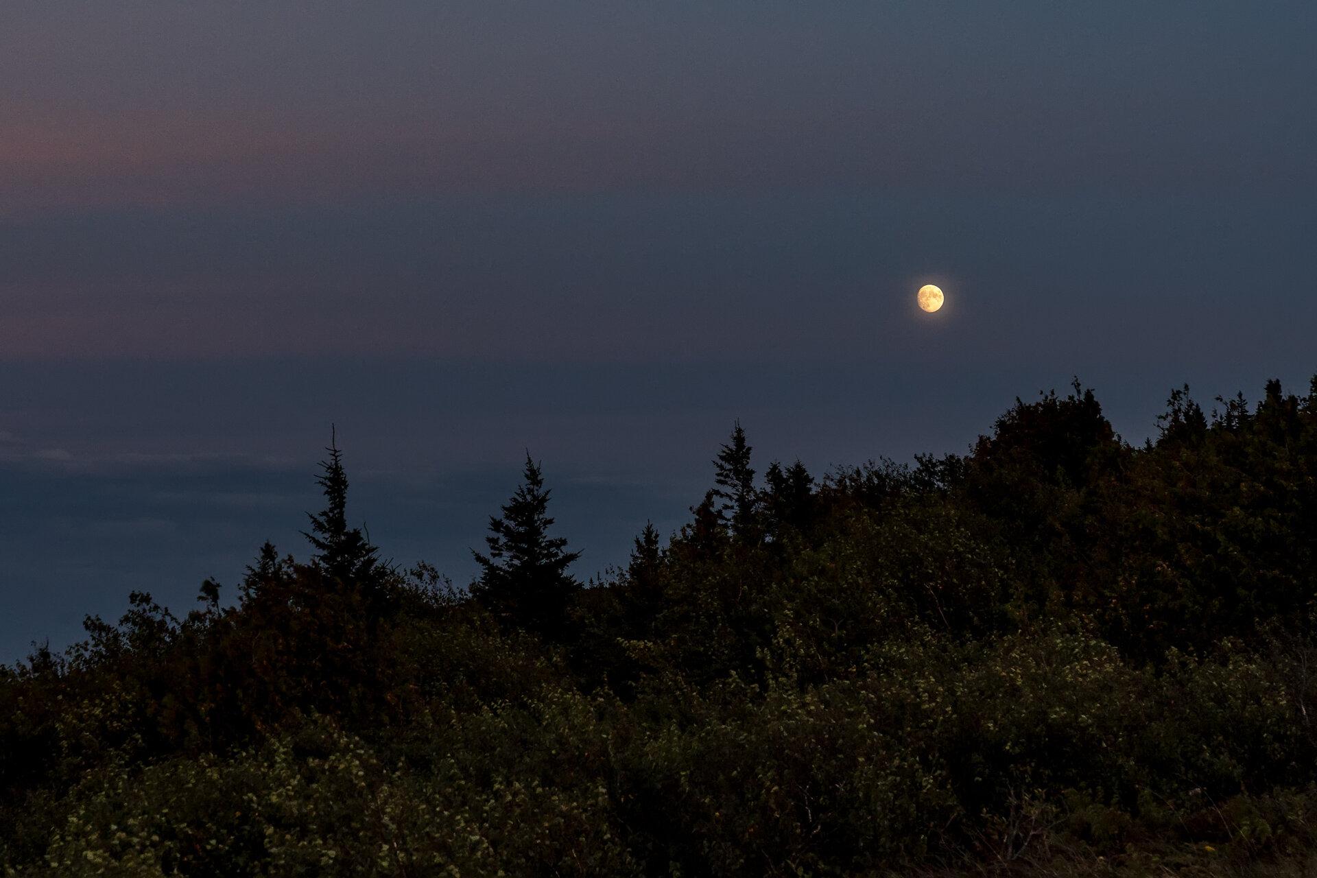 Bar-Harbor-Maine-Sunset-vacation-Kathleen-Kathy-Roberts-Asheville-NC-Photographer-2.jpg