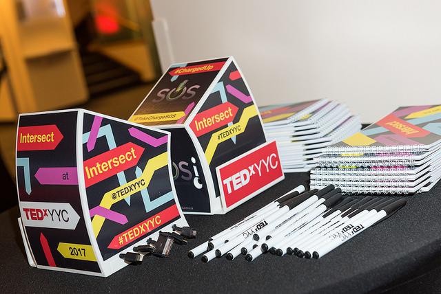 TEDxYYC 2017 - SOS Minis 3 MED.jpg
