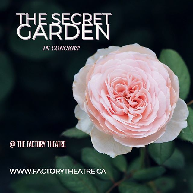 This Friday and Saturday only. Don't miss your chance to be a part of this magic. * * * * #musicaltheatre #torontotheatre #bryantproductions #toronto #secretgarden