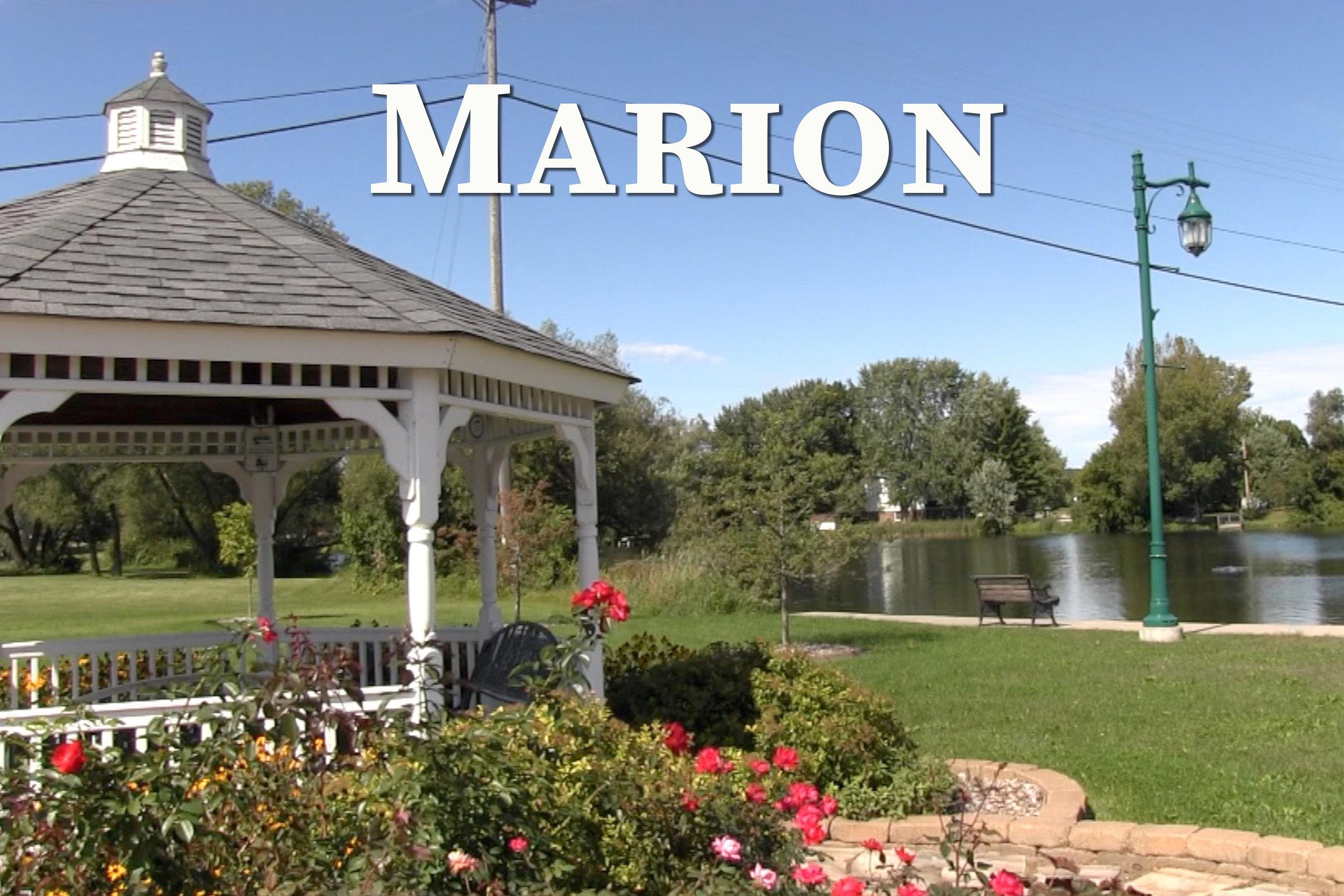 Marion Link