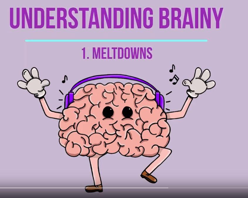 Understanding Brainy - 1. Meltdowns