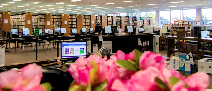 Ongoing Initiatives to Improve the Pomona Public Library -