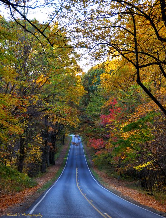 Skyline Drive, VA