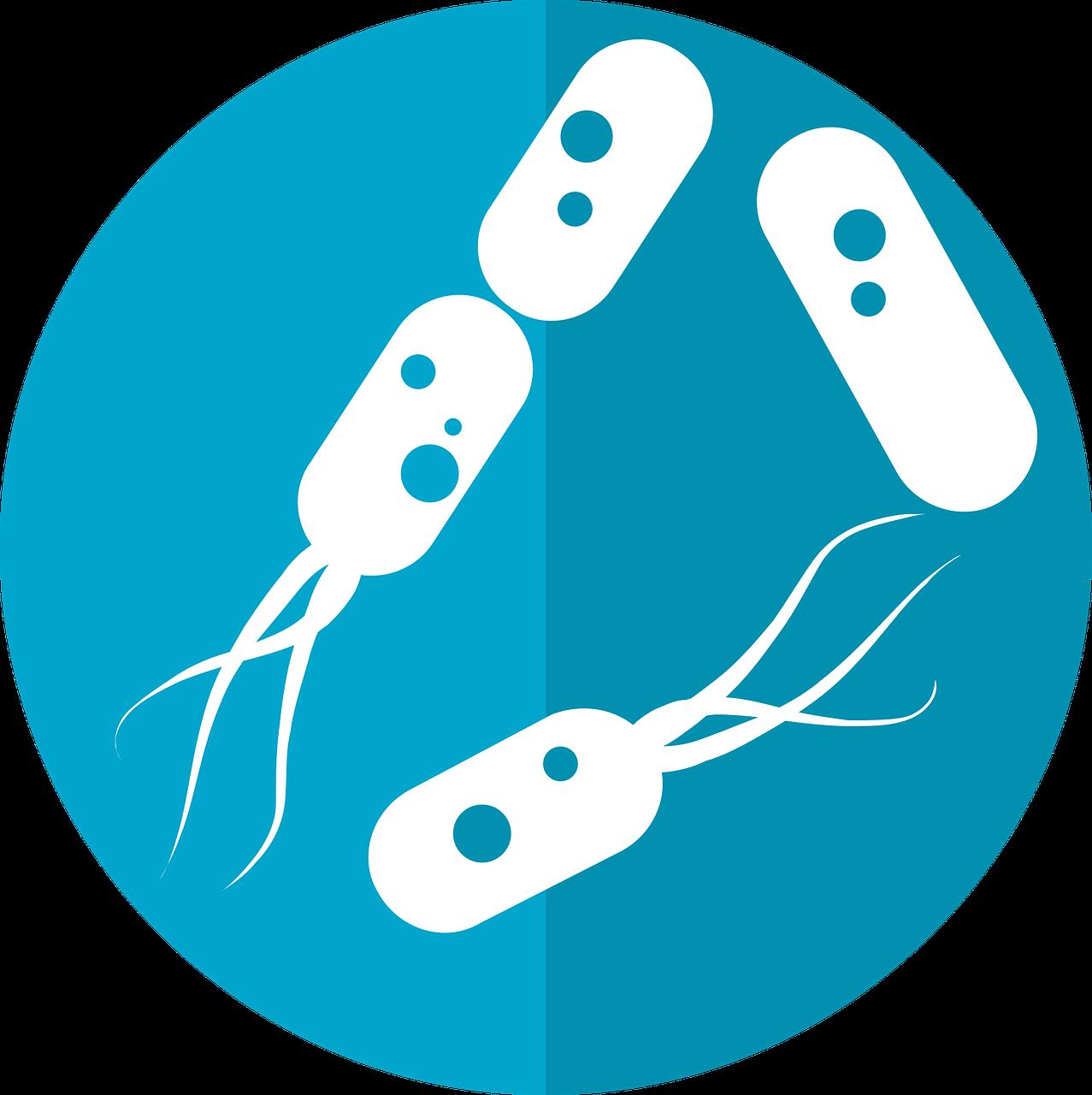 microbiome bacteria image