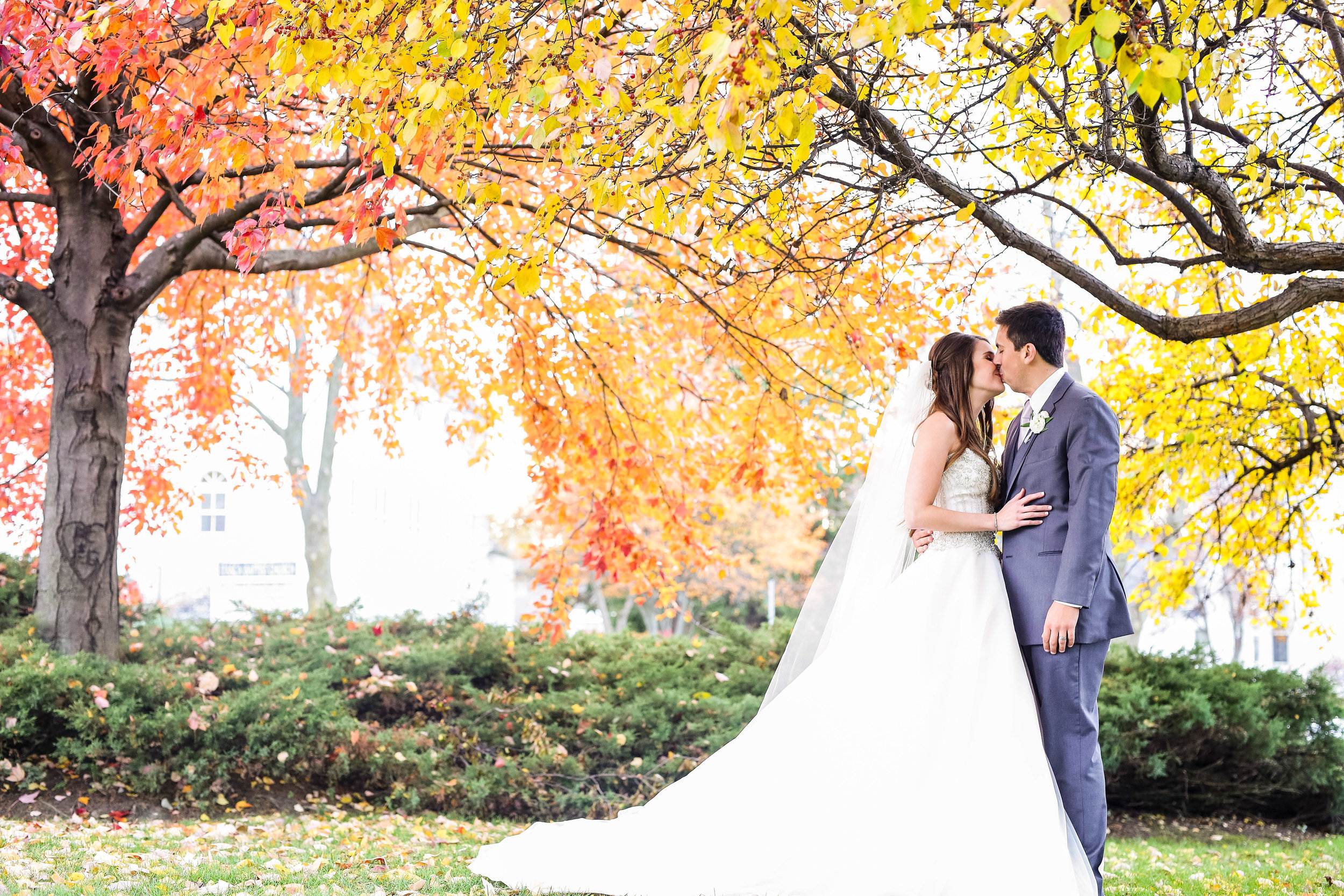Bride kissing groom under colorful tree