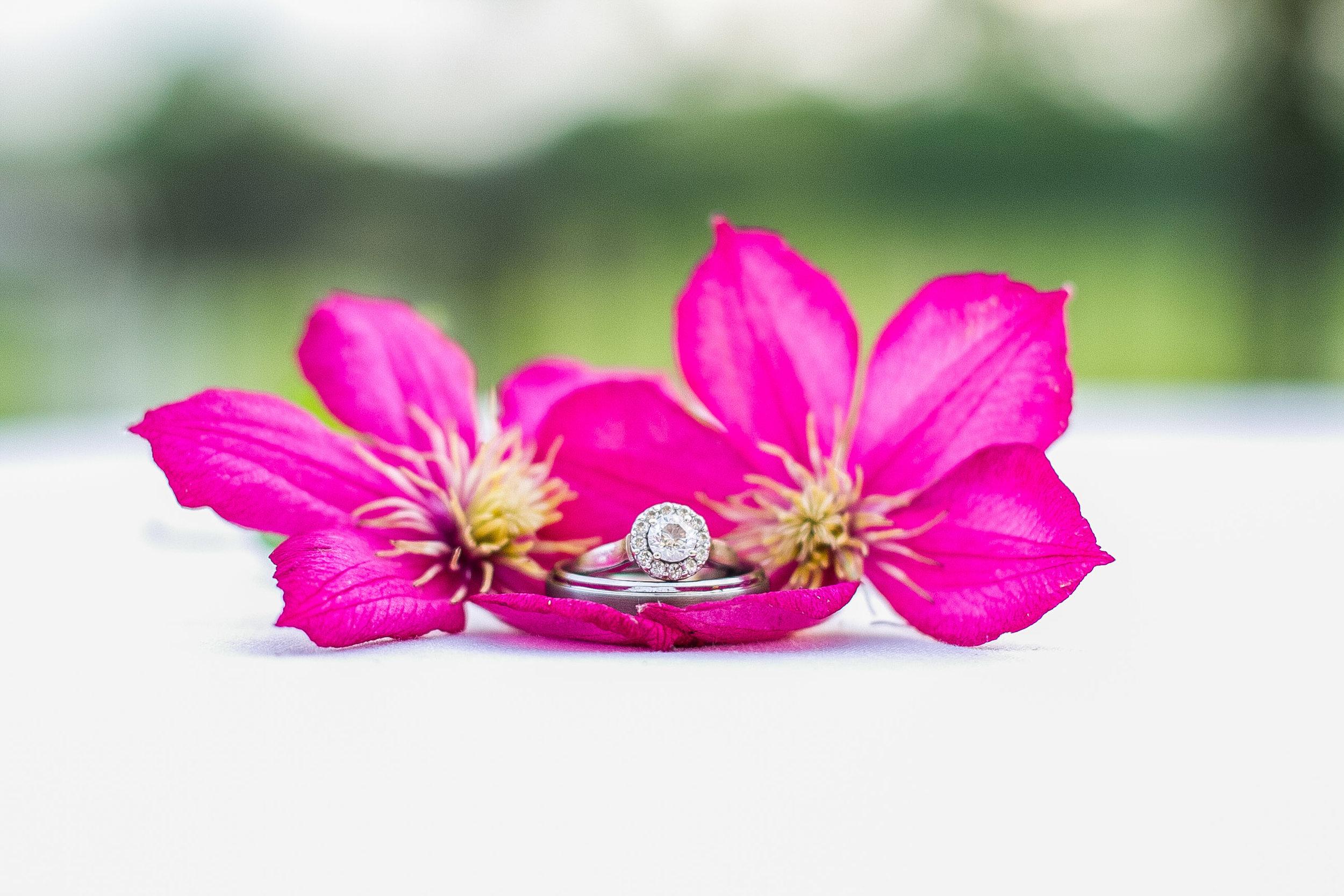 detail shot of wedding rings inside pink flowers
