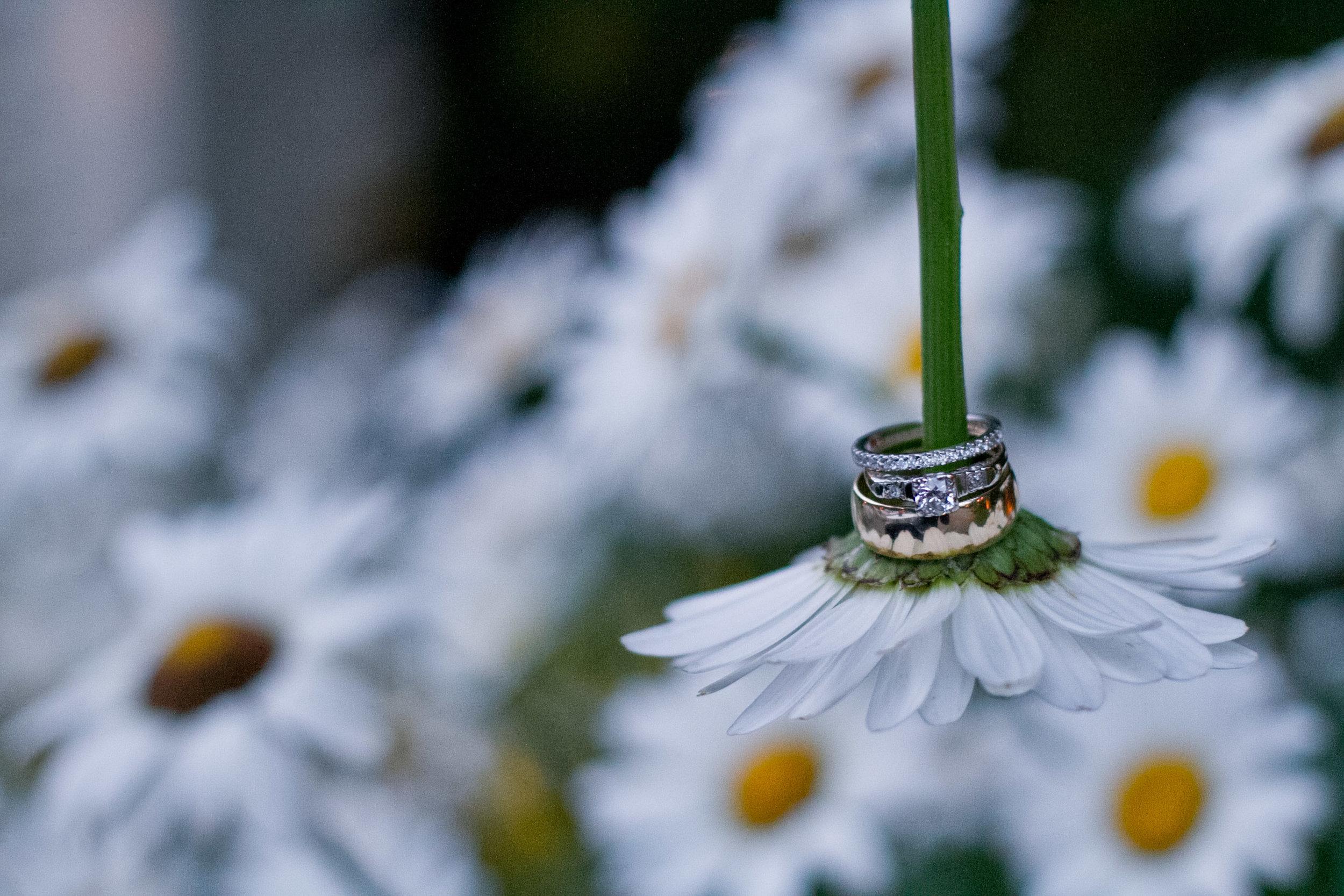 wedding ring detail shot on flowers stem