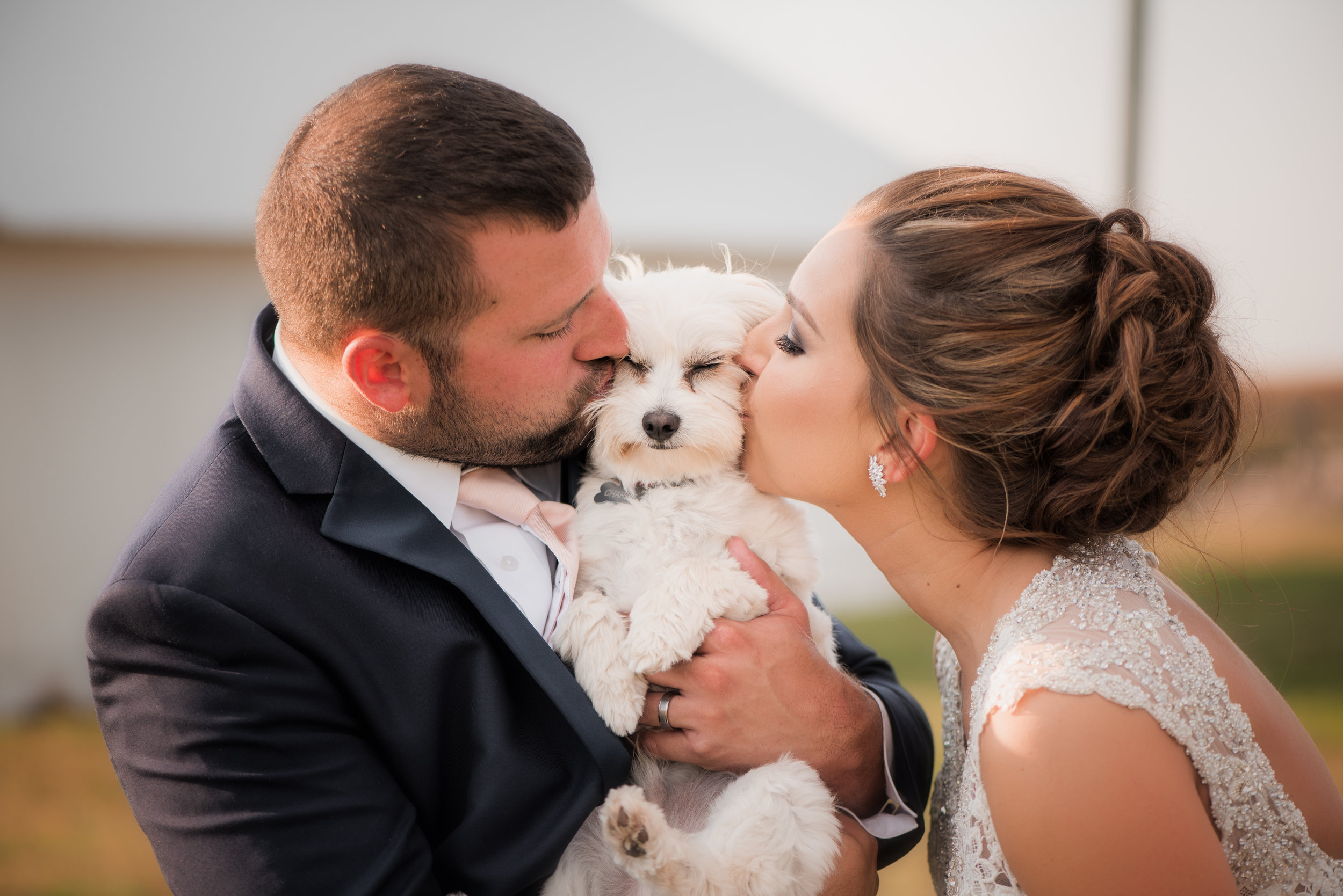bride-groom-kiss-bichon-frise-wedding-photo.jpg