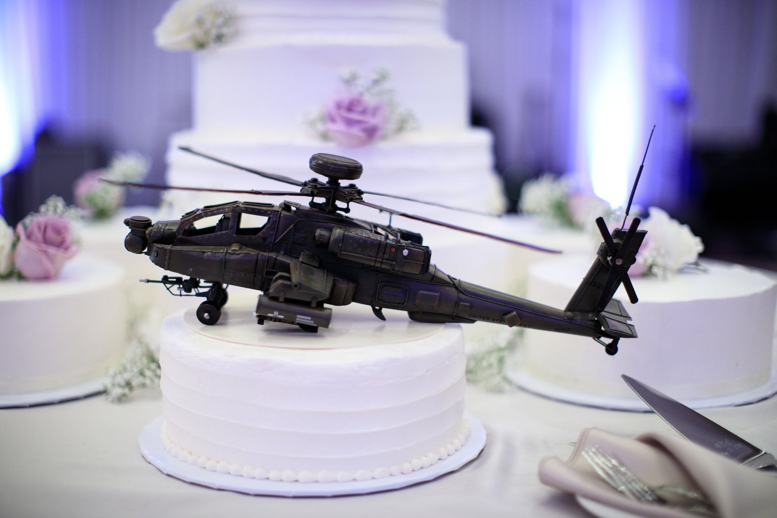 pilot-wedding-cake.jpg
