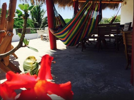 lush-hostel-bar.jpg
