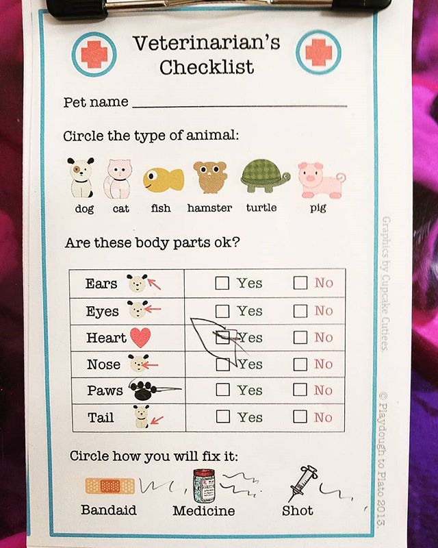 """This month we're learning about taking care of our animal friends! The kids are having a great time listening to critter """"heartbeats"""" and bandaging chicken legs. 🐔"""