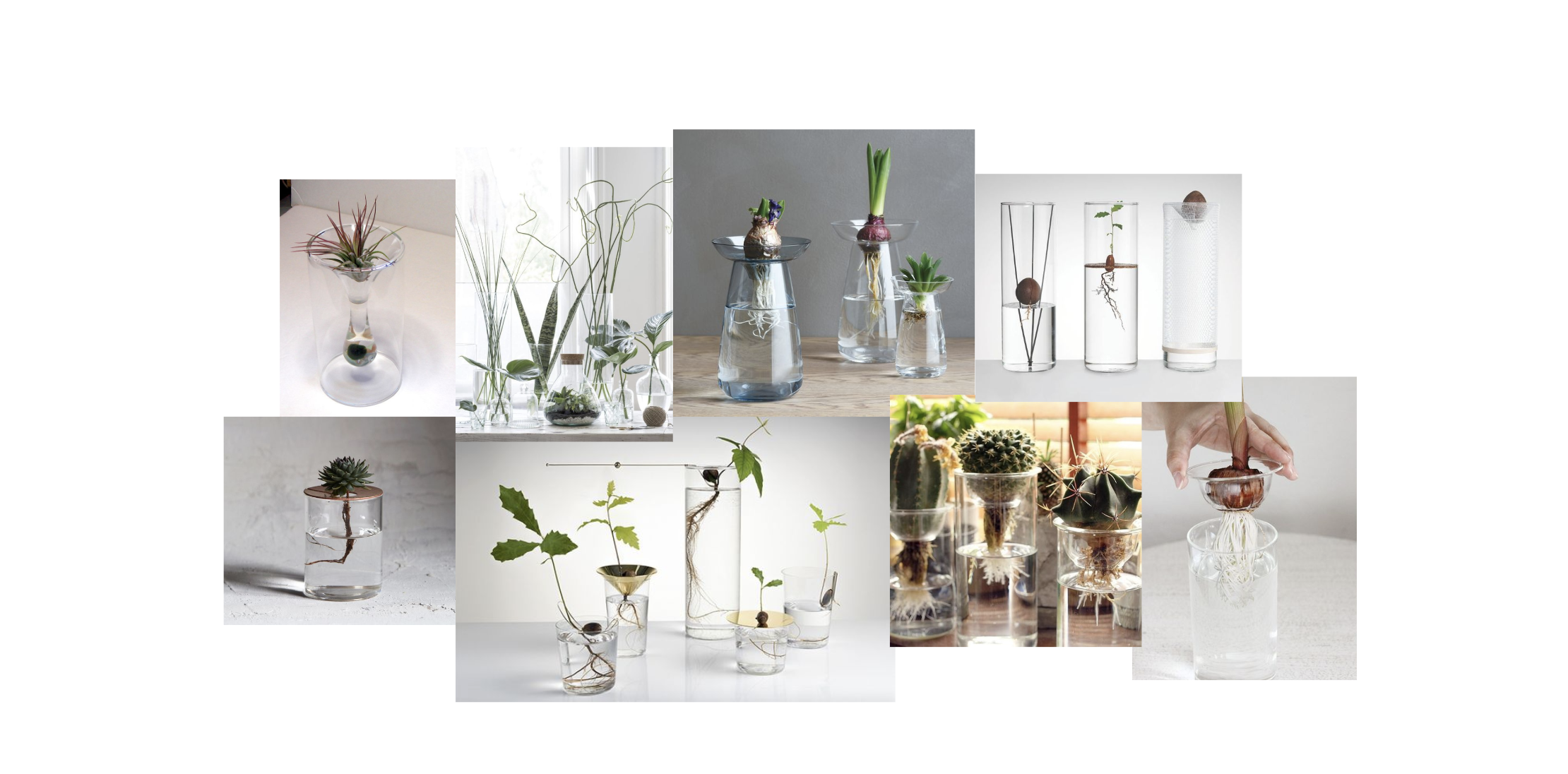 Hydroponic plant pot support inspiration images.