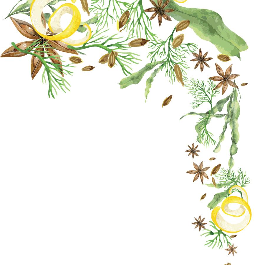 botanicals2.jpg