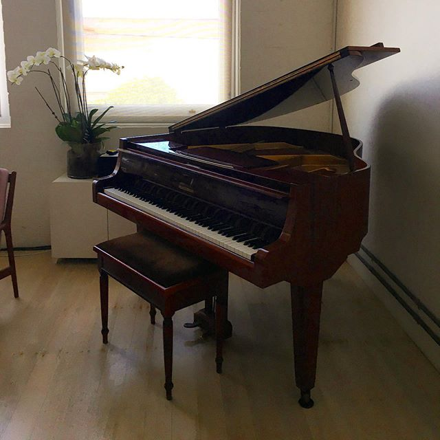 Need a new caretaker for my beloved baby grand. If you have the space and would like to look after it from early July HMU 💫