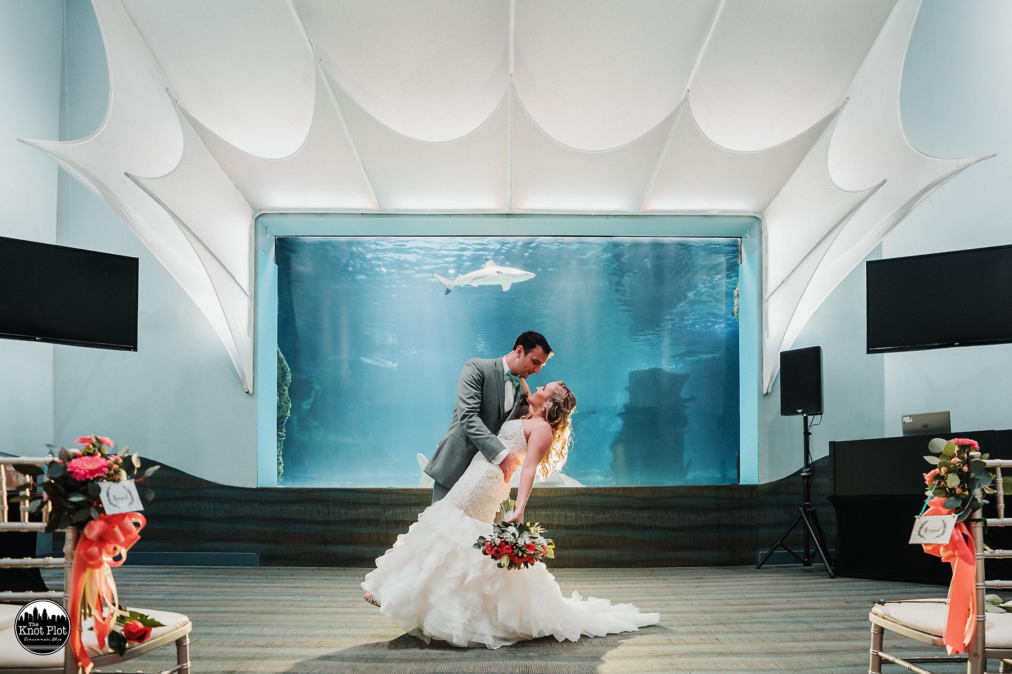 Newport-Aquarium-Wedding-Photos-4.jpg