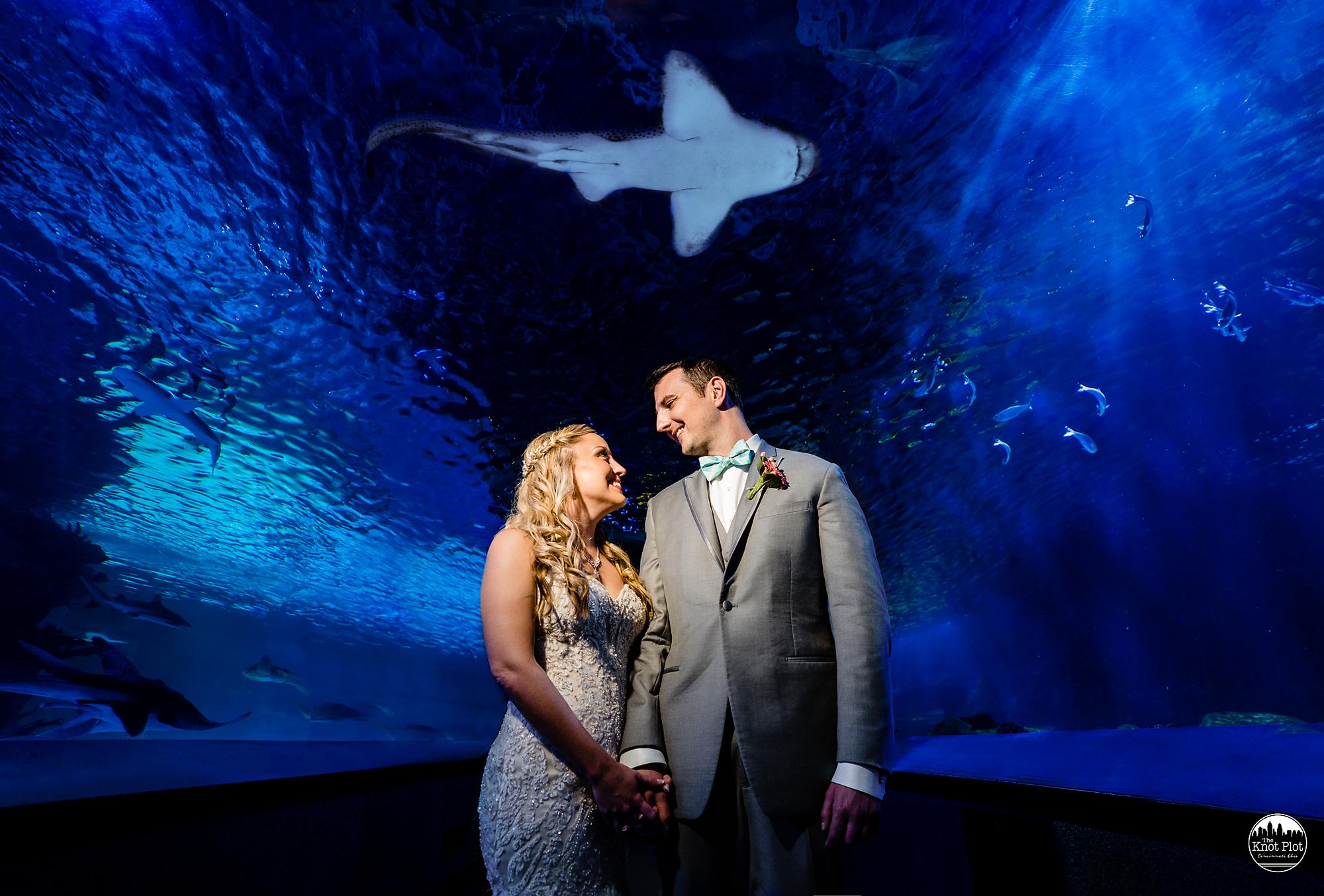 Newport-Aquarium-Wedding-Photos-3.jpg