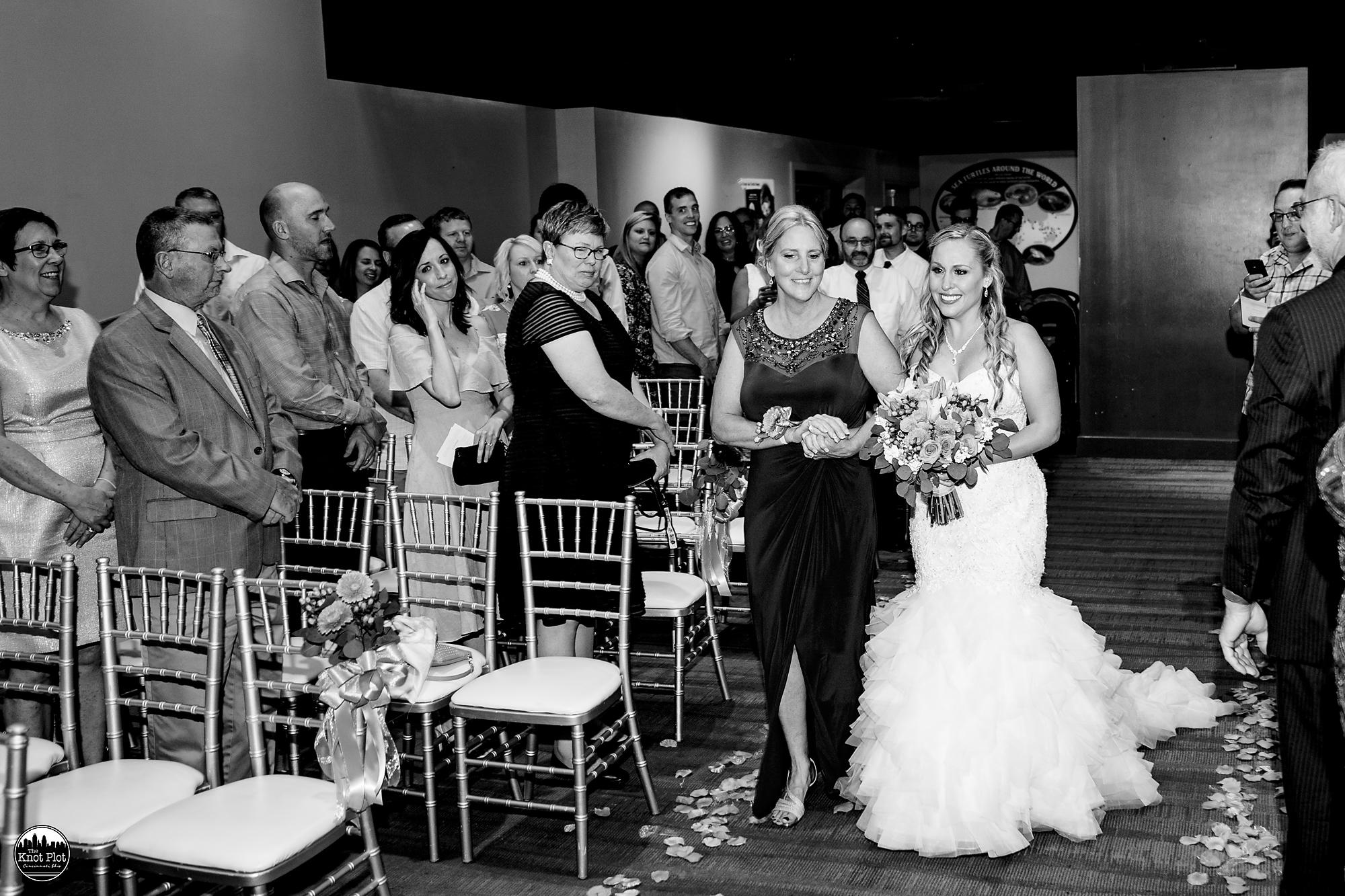 Newport-Aquarium-Wedding-Photos-10.jpg