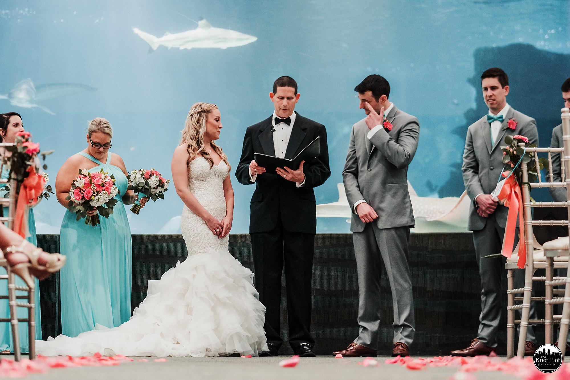Newport-Aquarium-Wedding-Photos-11.jpg