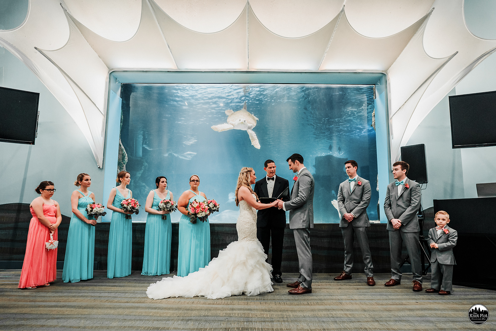 Newport-Aquarium-Wedding-Photos-15.jpg