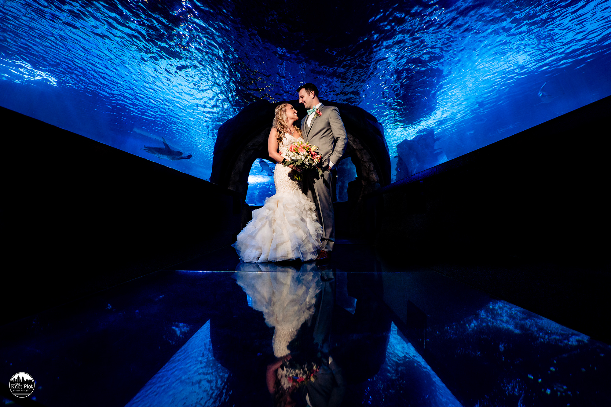 Newport-Aquarium-Wedding-Photos-17.jpg