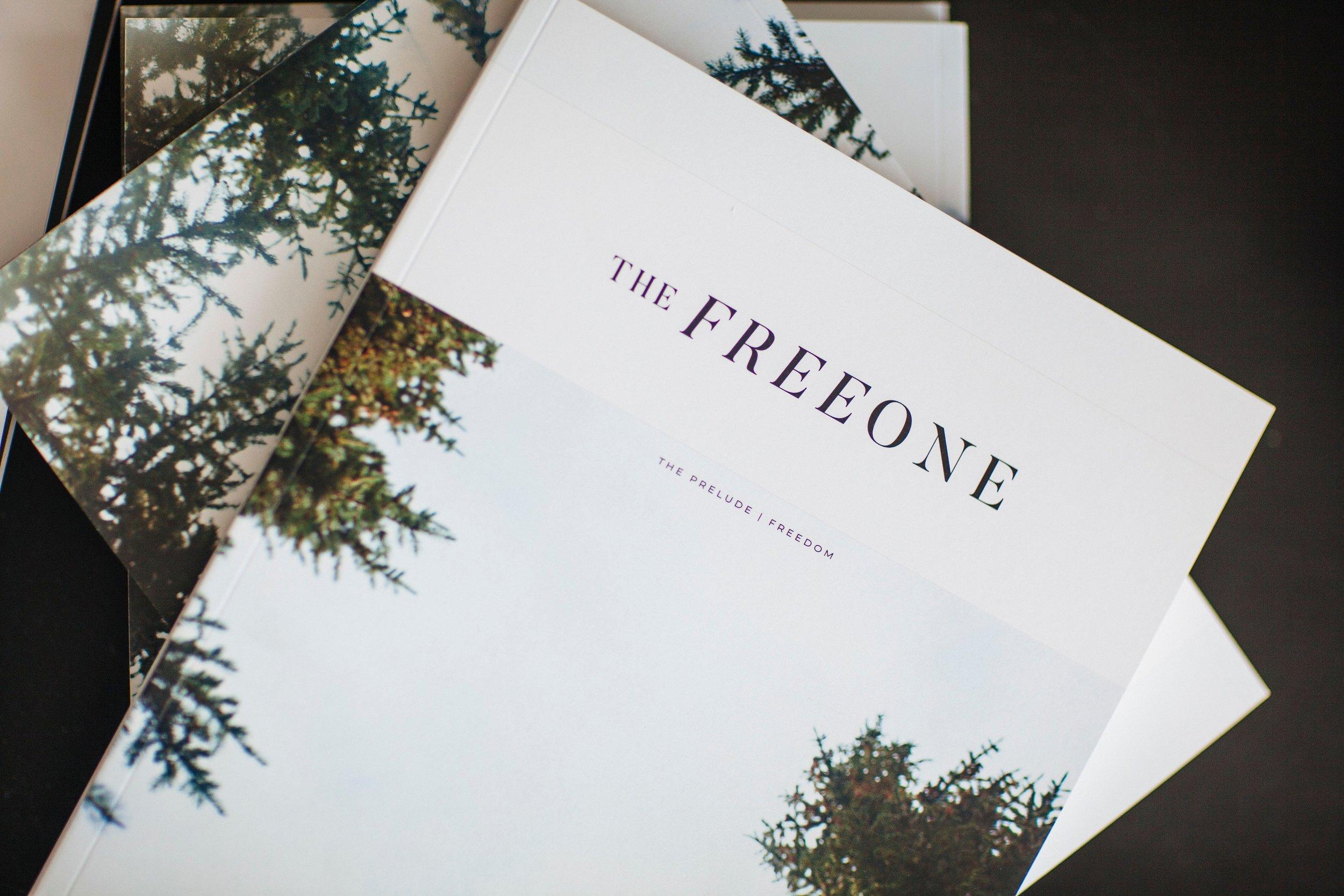 IMG_0830The Free One Prelude.jpg