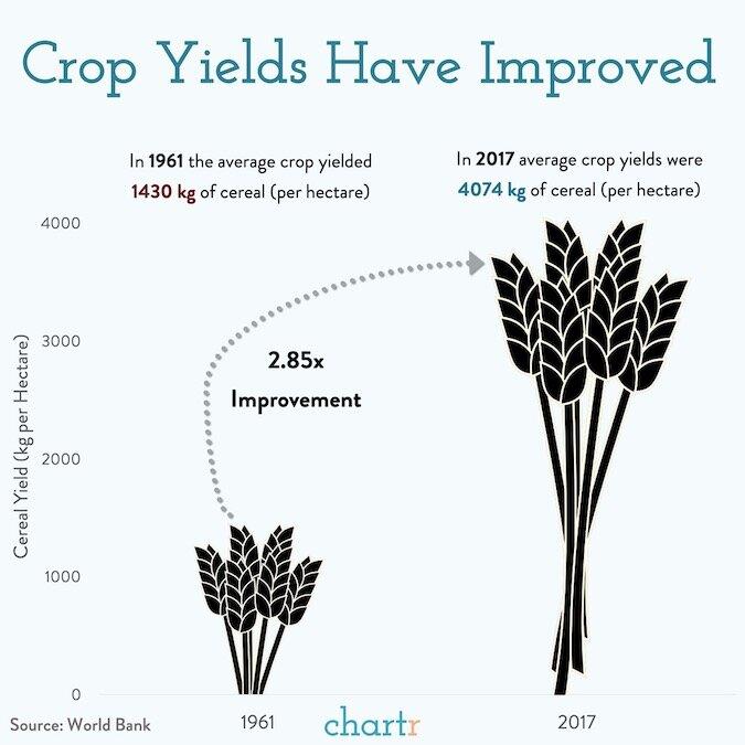 Crops copy.jpg