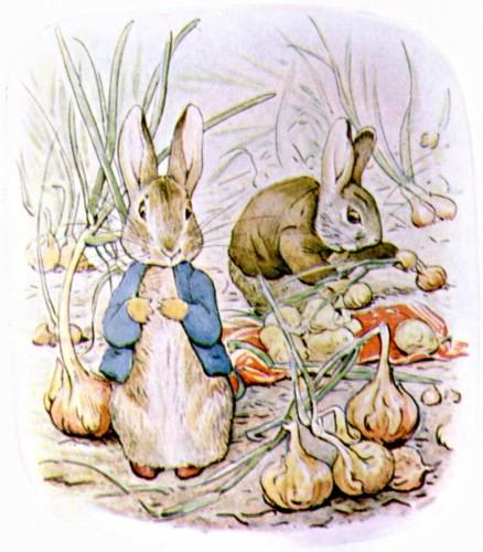 Peter Rabbit- Beatrix Potter