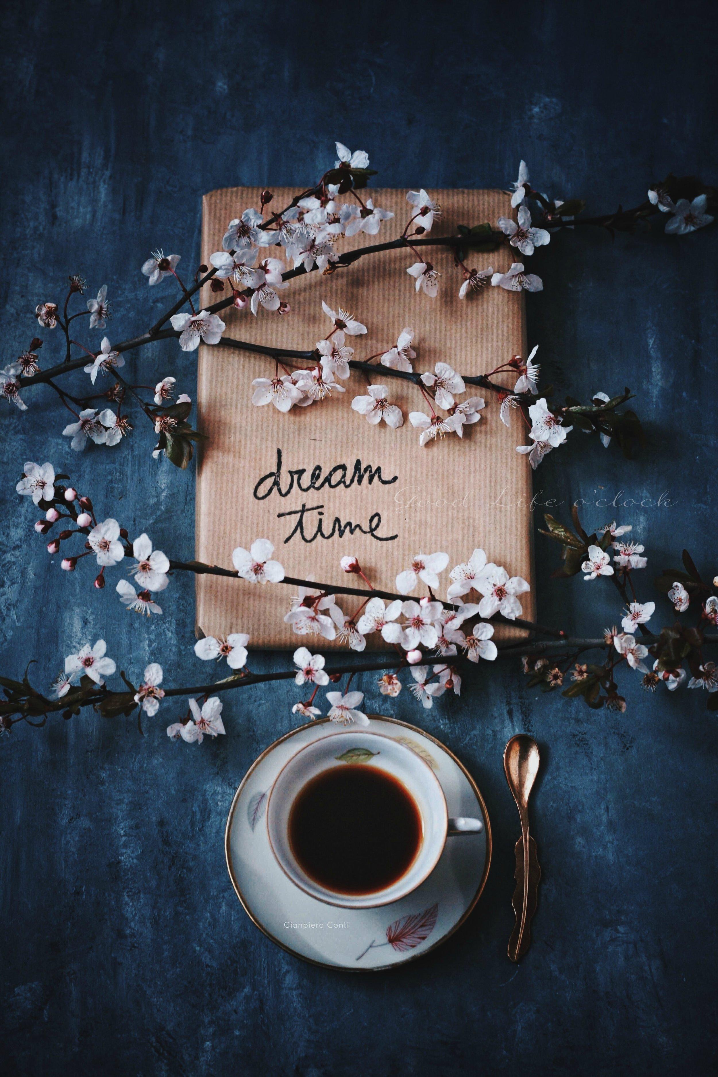 Dream Time.jpg