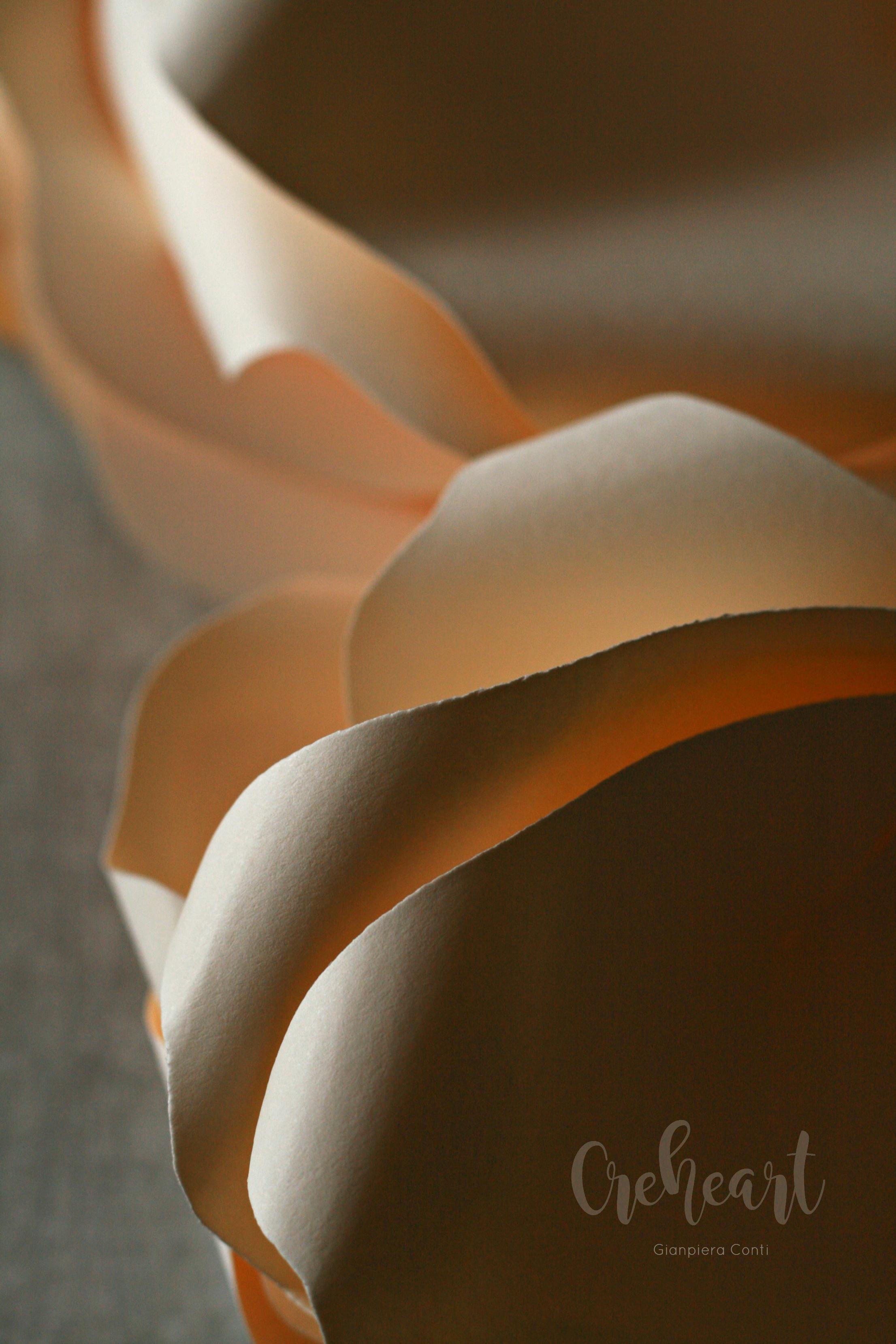 Ivory Petals Creheart GC.jpg