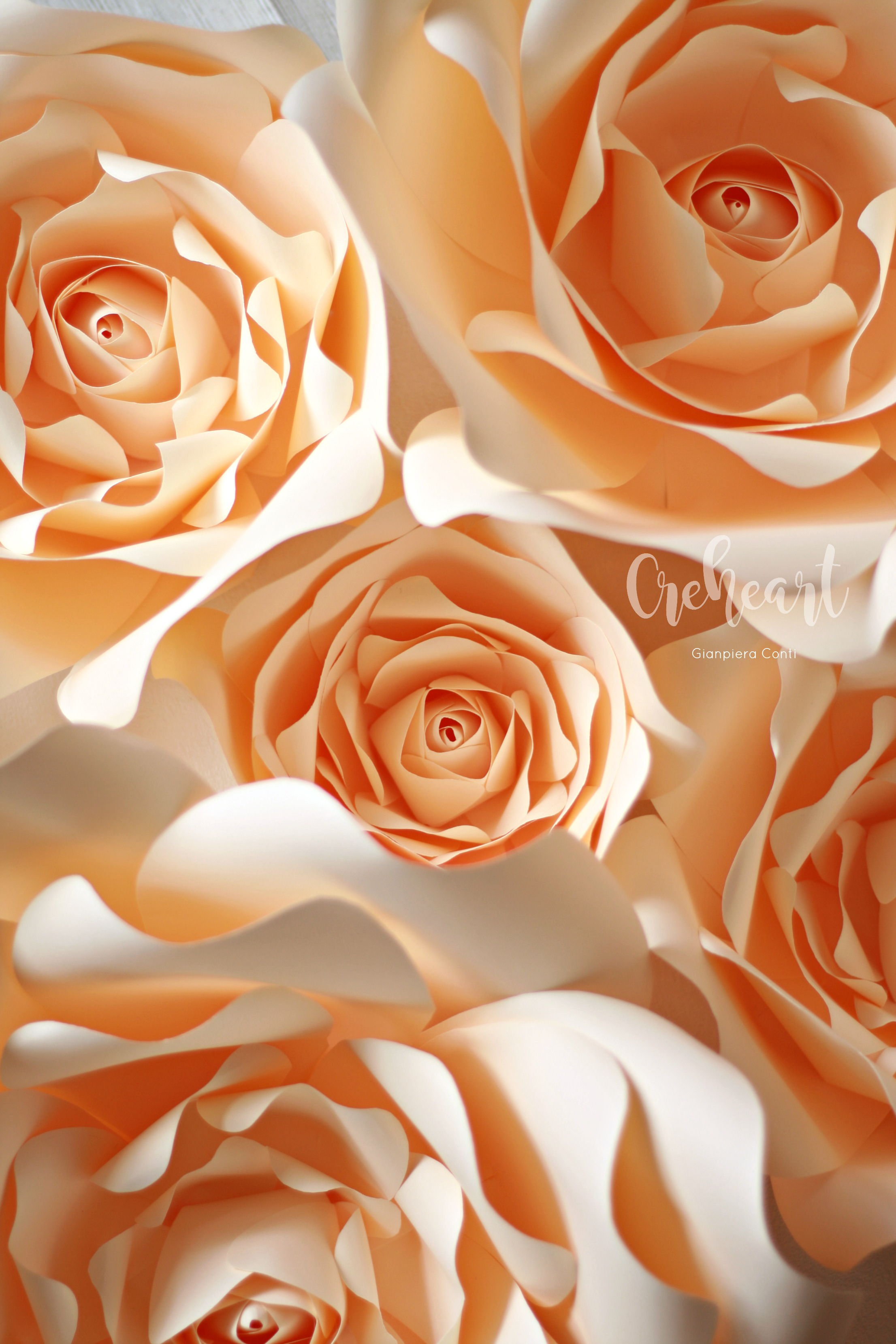 Ivory Roses Creheart GC.jpg